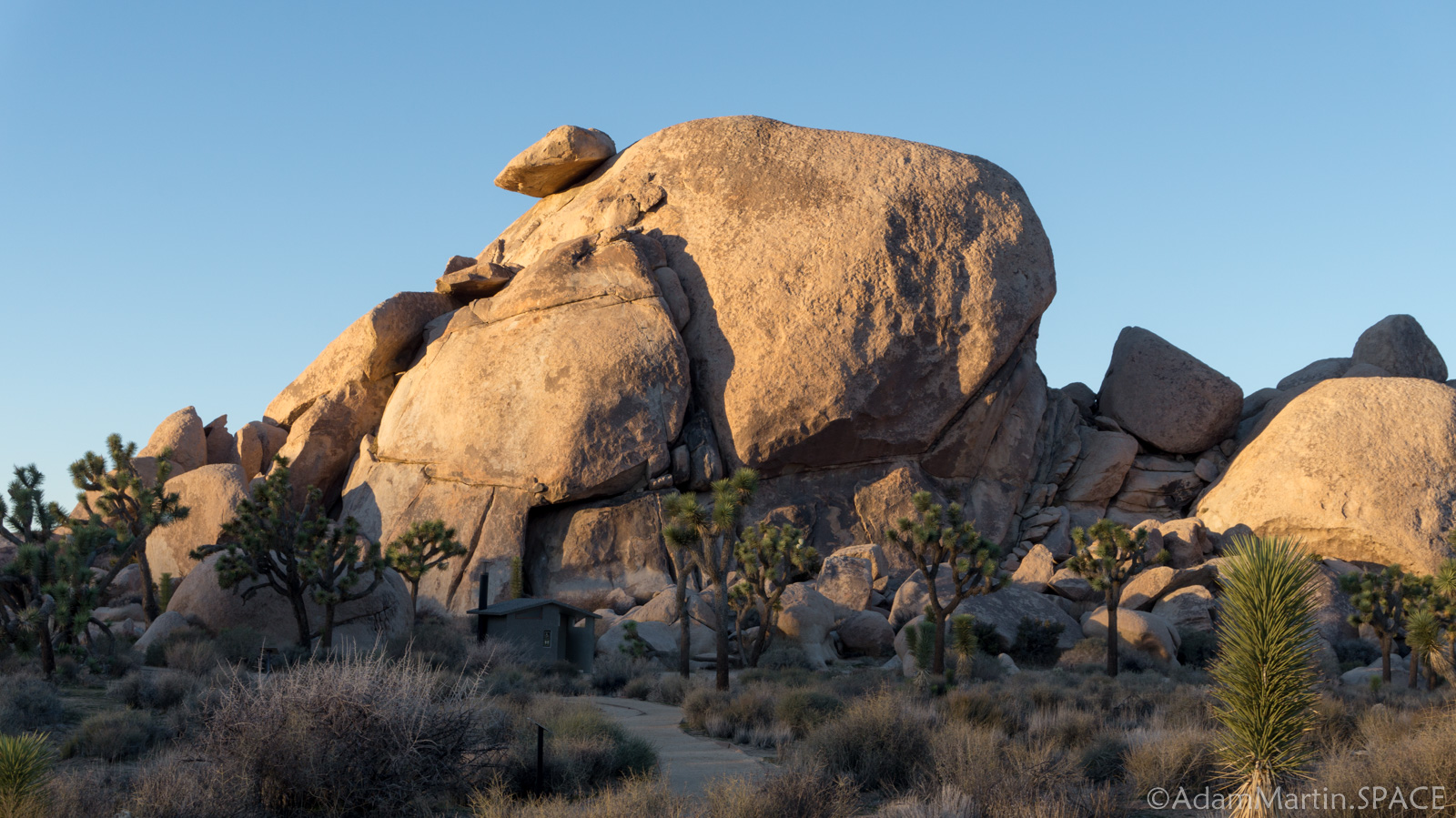 Joshua Tree – Cap Rock Sunset