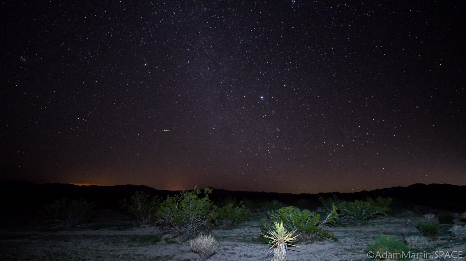 Joshua Tree – Stars at Pinto Basin
